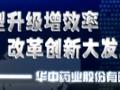 华中药业股份有限公司 (213播放)